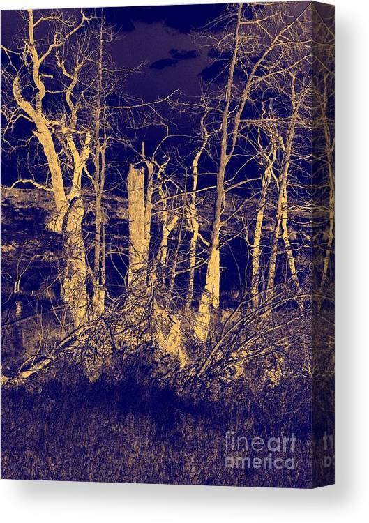 Landscape Canvas Print featuring the photograph Golden Forest by Mickey Harkins