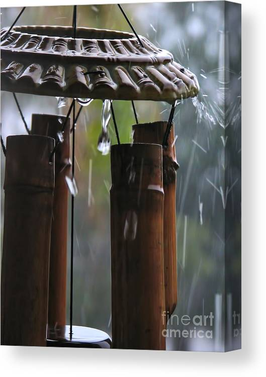Wind Canvas Print featuring the photograph In The Rain by Peggy Hughes