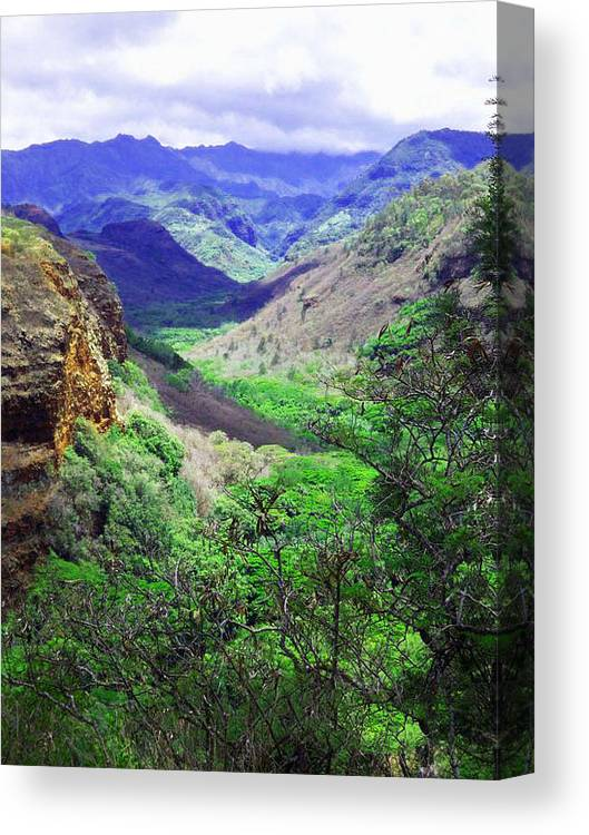 Landscape Canvas Print featuring the photograph Kauai Valley by Catherine Rogers
