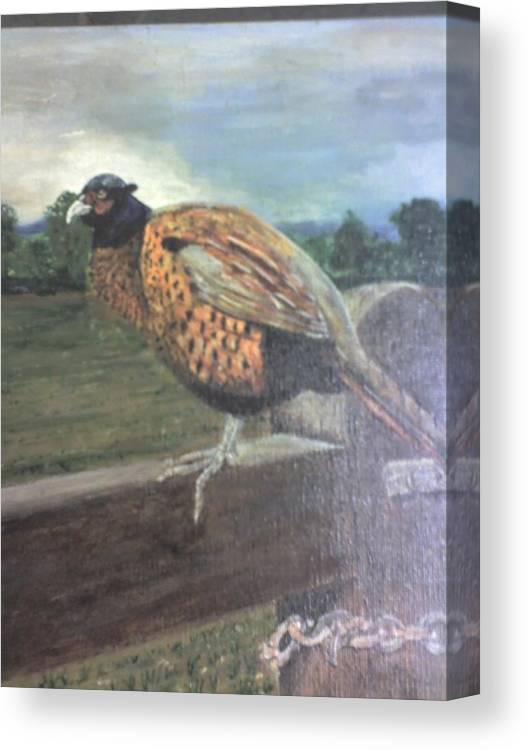 Cock Pheasant On Gate Canvas Print featuring the painting Keep Out by Stephen Thomson