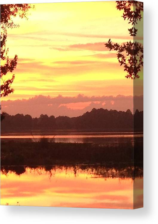 Canvas Print featuring the photograph Lake Spivey Morning by Eric Hurwitz