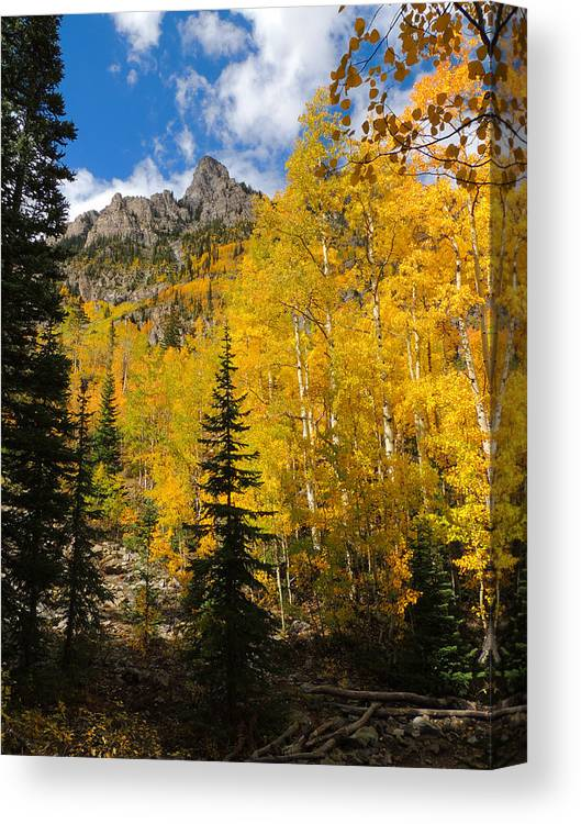 Aspen Canvas Print featuring the photograph Maroon Bells Color by Steve Anderson