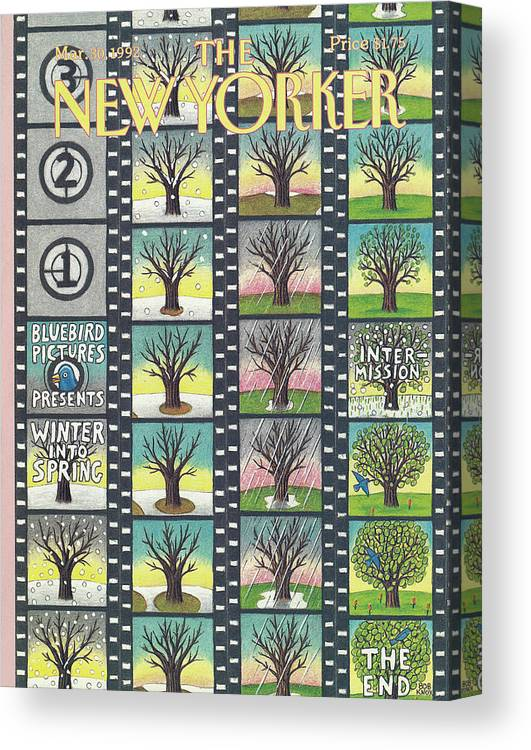 Film Tape Entitled Blue Bird Pictures Which Depicts A Tree That Lives Through The Seasons Of Winter Into Spring. Canvas Print featuring the painting New Yorker March 30th, 1992 by Bob Knox