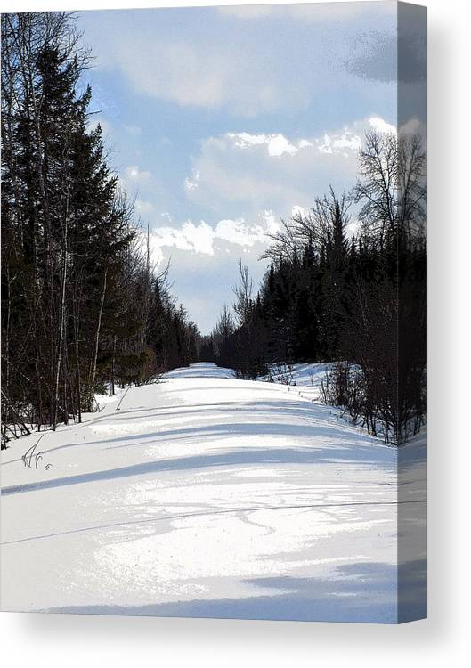 Snow Canvas Print featuring the photograph Old Woods Road by William Tasker