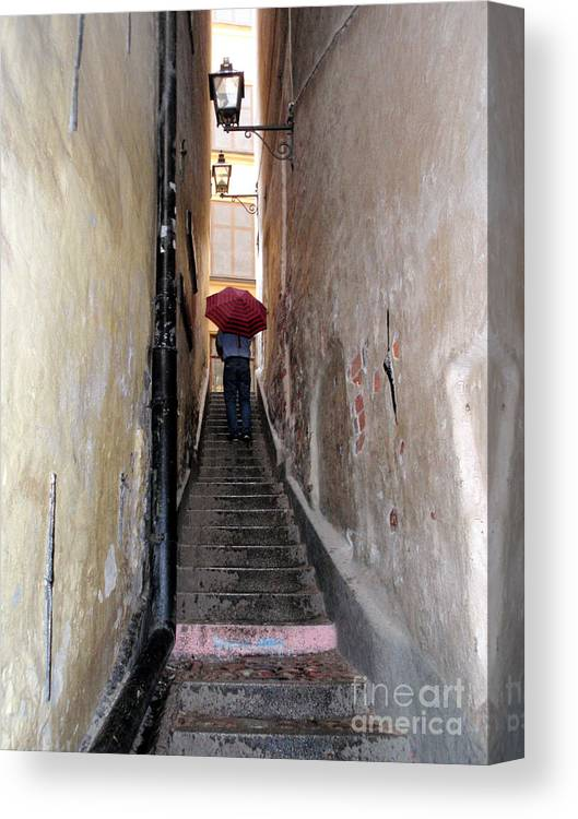 Umbrella Canvas Print featuring the photograph Pink Step by Jack Gannon