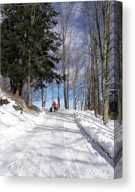 Snow Canvas Print featuring the photograph Stairway To Heaven by Mark J Curran
