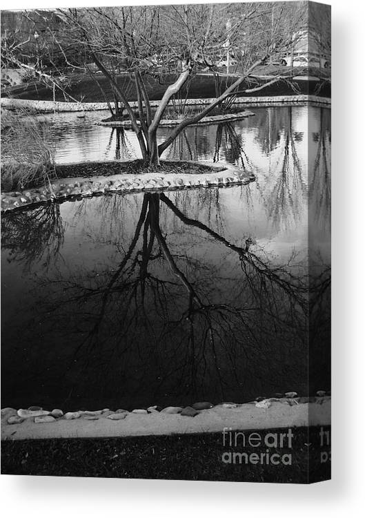 Black And White Canvas Print featuring the photograph Tree Reflections On The Pond by Rachel Butterfield