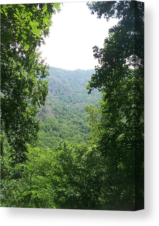 Landscape Canvas Print featuring the photograph View In Between by Rosanne Bartlett
