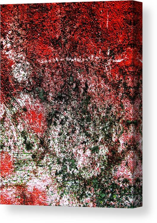 Wall Canvas Print featuring the digital art Wall Abstract 38 by Maria Huntley
