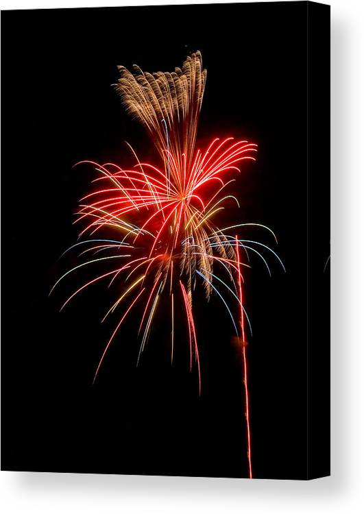 Fireworks Canvas Print featuring the photograph Wild Flowers by Devinder Sangha