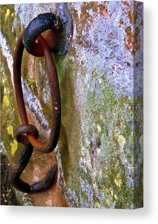 Metal Canvas Print featuring the photograph Hooked For Life by John Jones