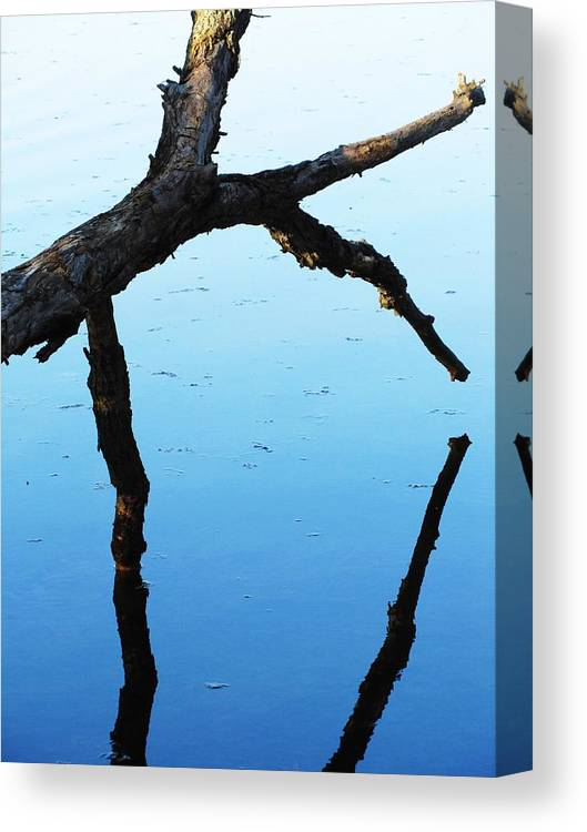 Water Reflection Canvas Print featuring the photograph Reflections #1 by Todd Sherlock