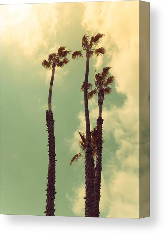 California Canvas Print featuring the photograph Hollywood Gold by Joanne Donnelly