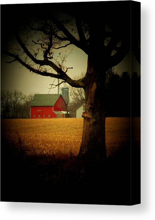 Tree Canvas Print featuring the photograph Tree And Barn by Michael L Kimble