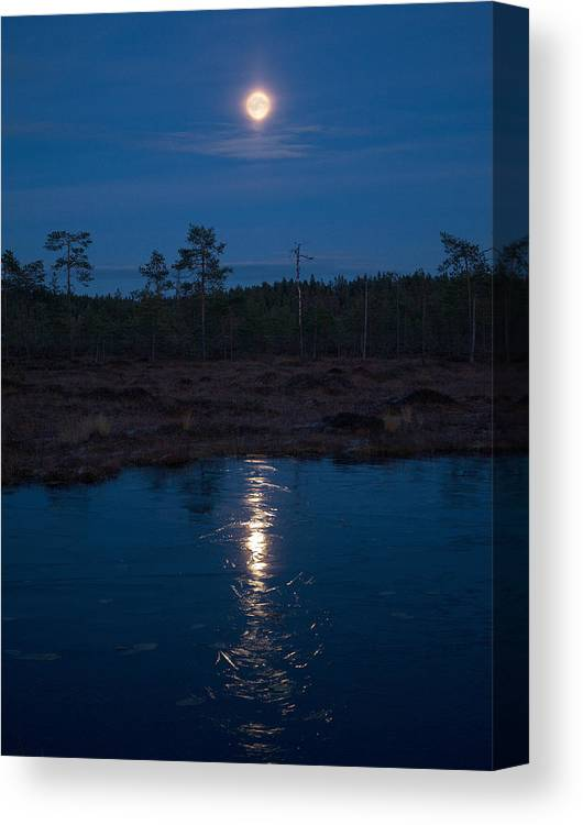 Lehtokukka Canvas Print featuring the photograph Moon Over Wetlands by Jouko Lehto