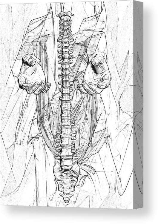 Anatomy Canvas Print featuring the digital art Bw Sketches by Joseph Ventura