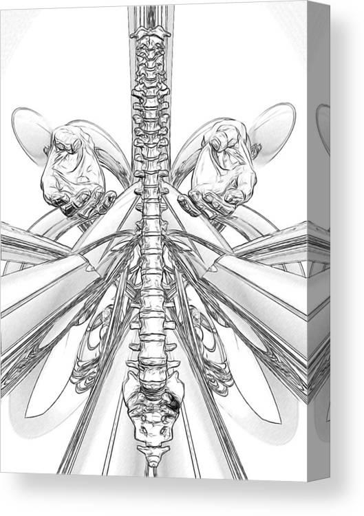 Anatomy Canvas Print featuring the digital art Bw Sketches by Joseph Ventura