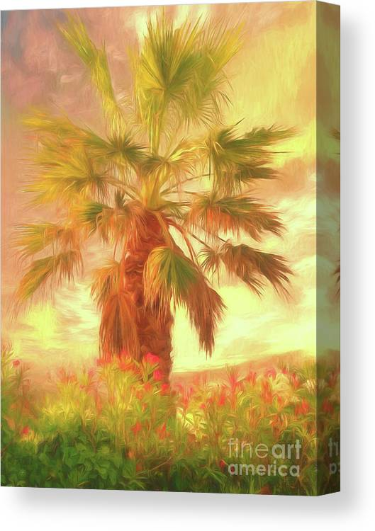 Palm Tree Canvas Print featuring the photograph A Refreshing Change Of Scenery by Leigh Kemp