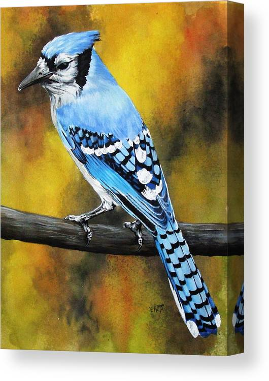 Common Bird Canvas Print featuring the painting Aristocrat by Barbara Keith