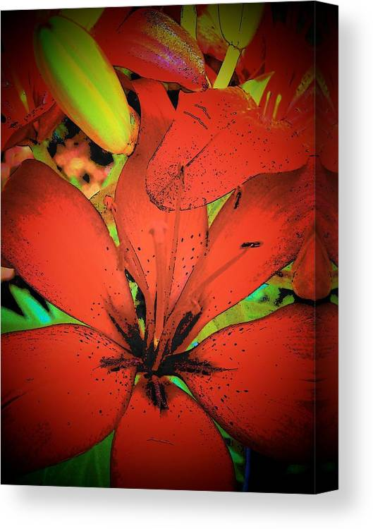 Asian Canvas Print featuring the photograph Asian Lily by Vijay Sharon Govender