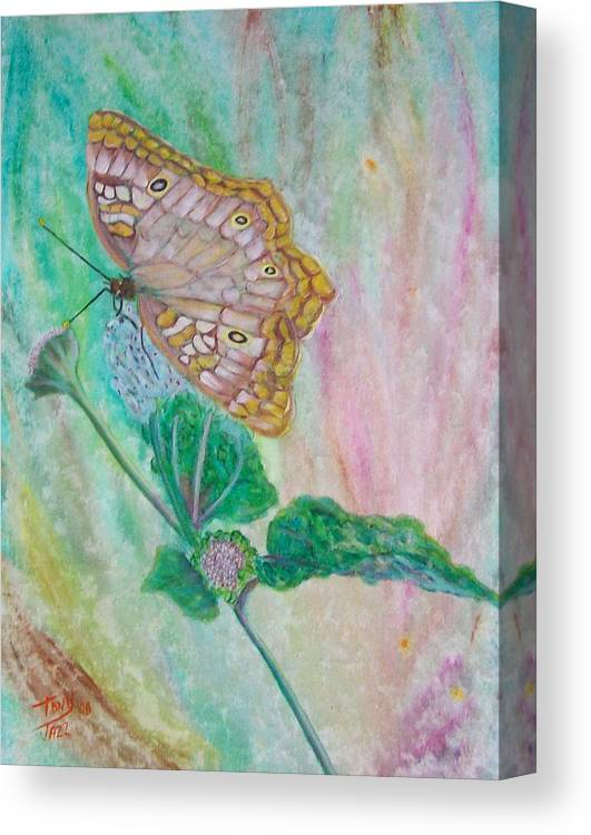 Butterfly Canvas Print featuring the painting Butterfly by Tony Rodriguez