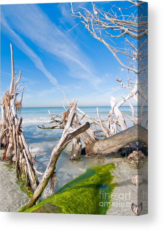 Driftwood Canvas Print featuring the photograph Driftwood C141354 by Rolf Bertram