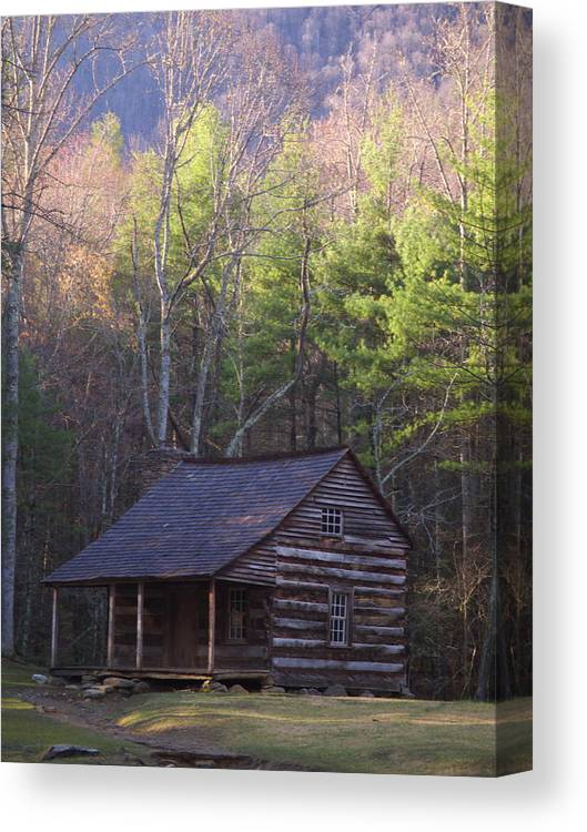 Scenic Canvas Print featuring the photograph Early Cove Homestead by Wayne Skeen