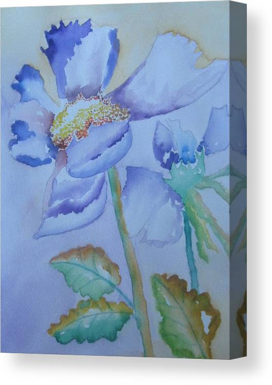 Watercolor Canvas Print featuring the painting Fall Daisy by Warren Thompson