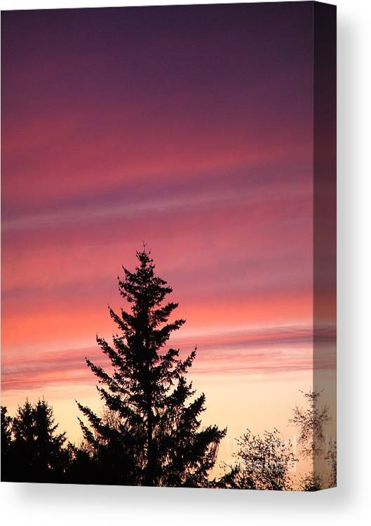 Sunset Photo Canvas Print featuring the photograph Forest Grove Sunset by Nick Gustafson