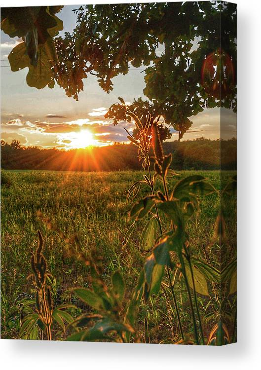 Sun Burst Canvas Print featuring the photograph Glorious Sunset by Angela Mocniak