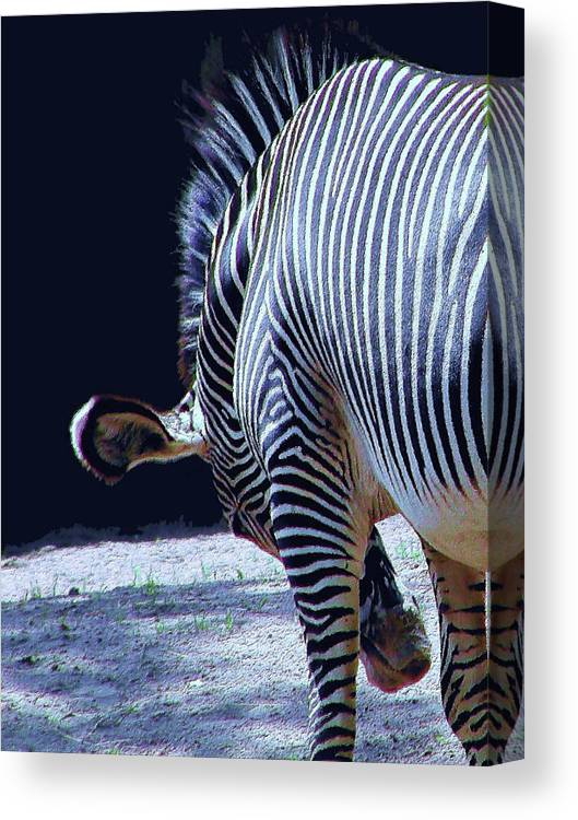 Zebra Canvas Print featuring the digital art I'm Such An Ass by Patricia Fatta