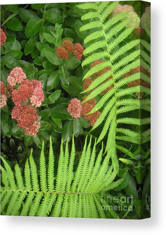 Nature Canvas Print featuring the photograph Jacqueline's Garden - Camaraderie Of Textures Too by Lucyna A M Green