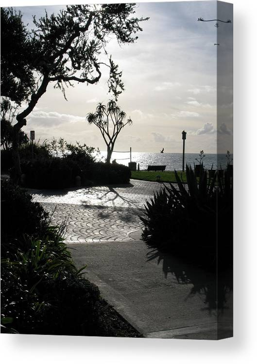Sunset Canvas Print featuring the photograph Marvin's Path by John Loyd Rushing