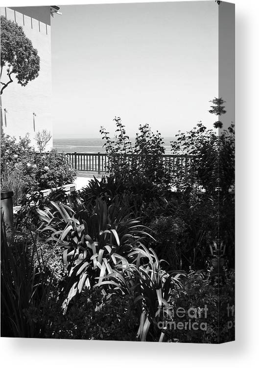 Ocean Canvas Print featuring the photograph Monterey Gardens Overlooking The Bay by Amy Delaine