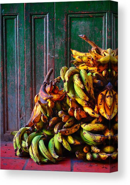 Patacon Canvas Print featuring the photograph Patacon by Skip Hunt