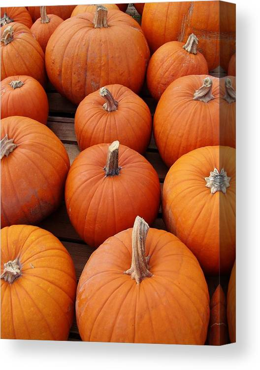 Pumpkin Canvas Print featuring the photograph Pumpkin Time by Florene Welebny