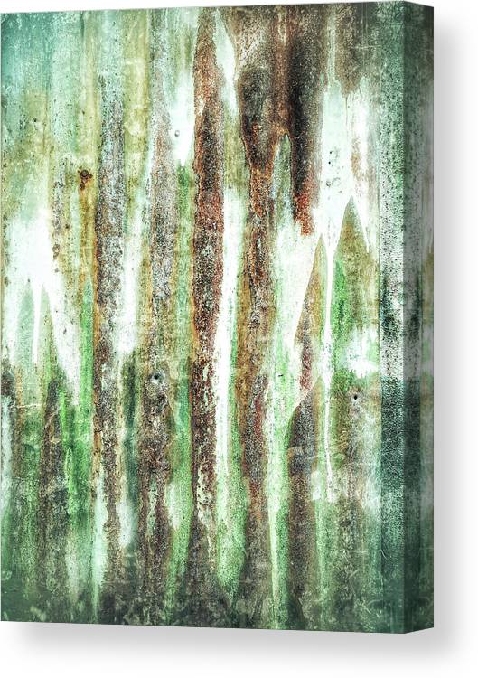 Abstract Canvas Print featuring the photograph Rusty Metal Background by Tom Gowanlock