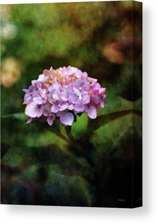 Impressionist Canvas Print featuring the photograph Small Blossoms 2388 Idp_2 by Steven Ward
