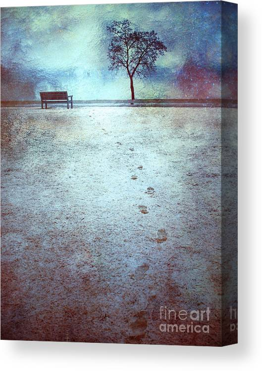 Bench Canvas Print featuring the photograph The Last Snowfall by Tara Turner