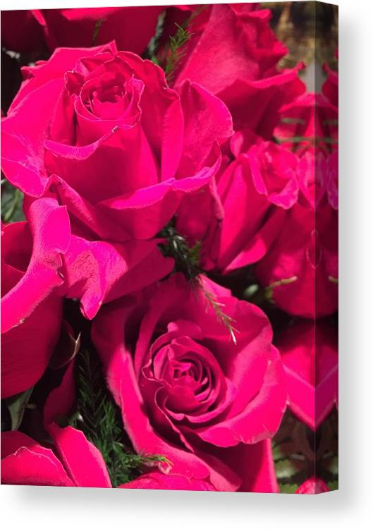 The Rose Photograph By Shawn Hughes Canvas Print featuring the photograph The Rose by Shawn Hughes