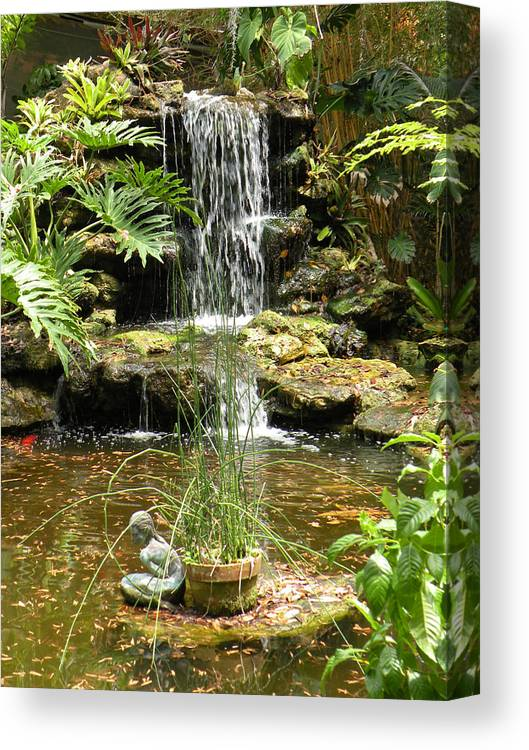 Pond Canvas Print featuring the photograph Tropical Paradise by Rosalie Scanlon