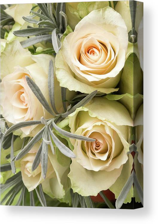 Roses Canvas Print featuring the photograph Wedding Flowers by Wim Lanclus