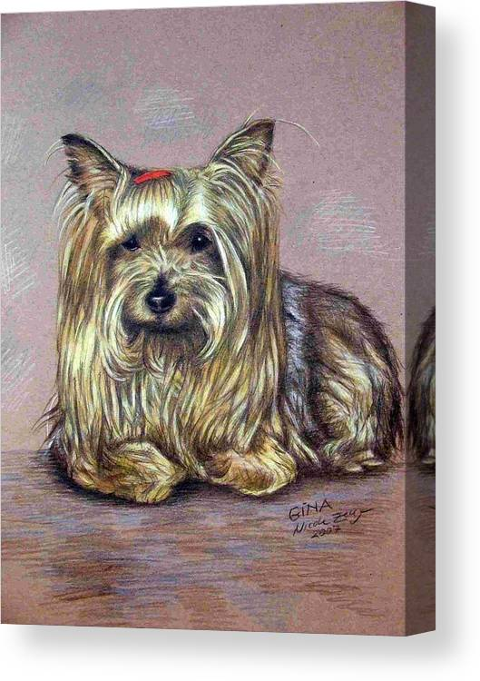 Dog Canvas Print featuring the drawing Yorkshire Terrier by Nicole Zeug