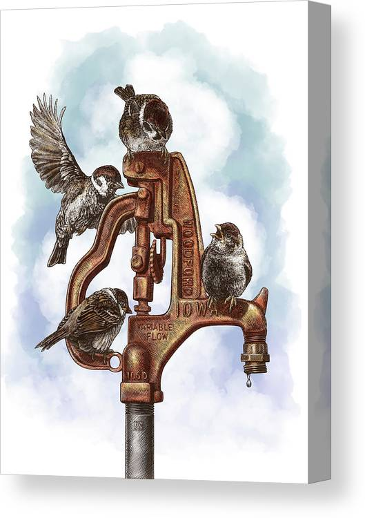 Birds Canvas Print featuring the drawing Talk Around The Watercooler by Clint Hansen