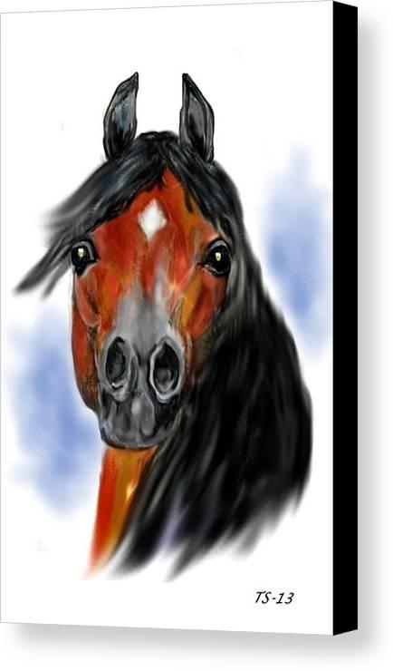 Arabian Canvas Print featuring the digital art My Heart Of Hearts by Tarja Stegars