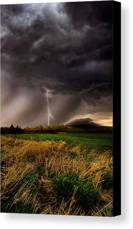 Storm Canvas Print featuring the photograph Profound by Phil Koch