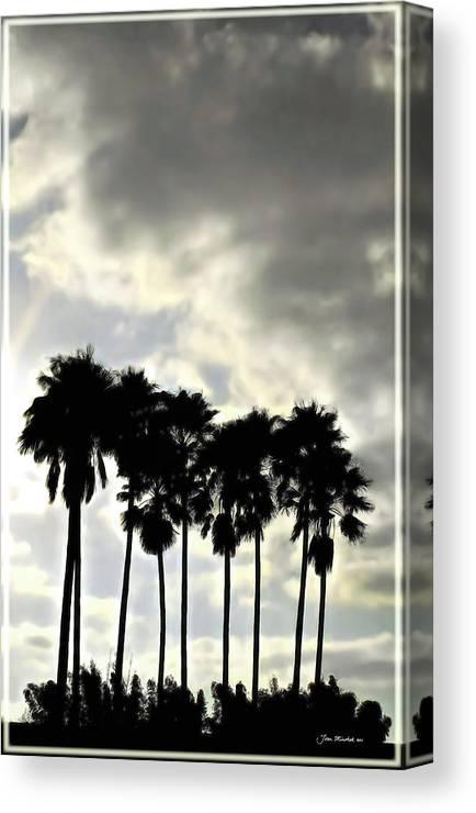 Palm Shadows Canvas Print featuring the digital art Disney's Epcot Palm Trees by Joan Minchak