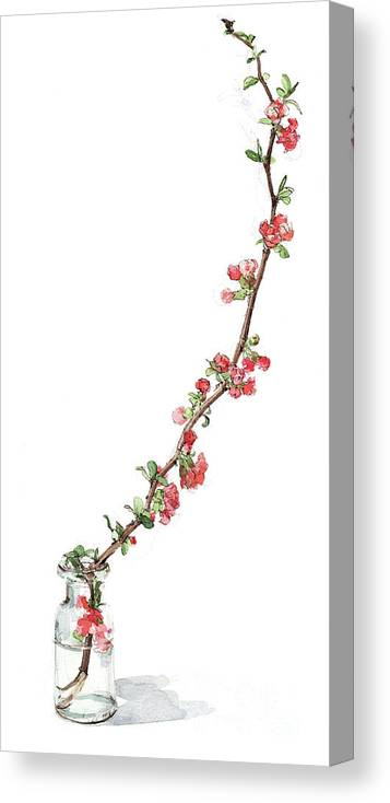 Painting Canvas Print featuring the painting Japonica by Madeline Floyd