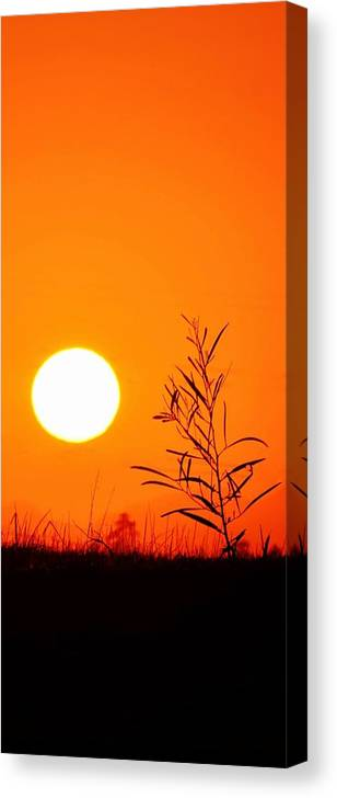 Landscape; Sunrise; Swartland; South Africa; Morning Light; Nature; Sky; Orange; Mountains; Meadow; Grass; Canvas Print featuring the photograph Morning Light by Werner Lehmann
