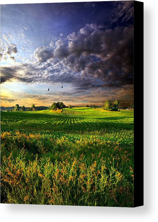 Horizons Canvas Print featuring the photograph All I Need by Phil Koch